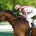 Longchamp - 03/05/2014 - PRIX GANAY (Gr1) - CIRRUS DES AIGLES, Christophe Soumillon -
