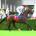 Longchamp - 13/09/2015 - QATAR PRIX VERMEILLE (Gr 1) - TREVE, Thierry Jarnet -