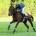 Chantilly - 23/06/1999 - Entrainement sur Les Aigles - MONTJEU, Cash Asmussen -